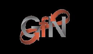 GfN mbH